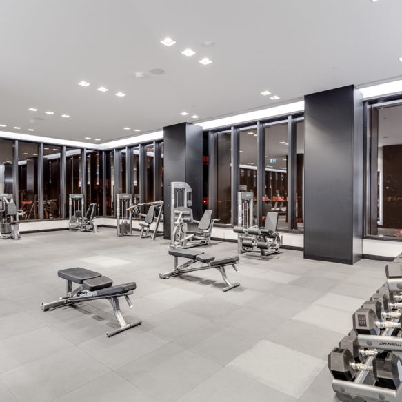 A brightly lit grey modern fitness centre featuring floor-to-ceiling windows, fitness equipment and a row of free weights.
