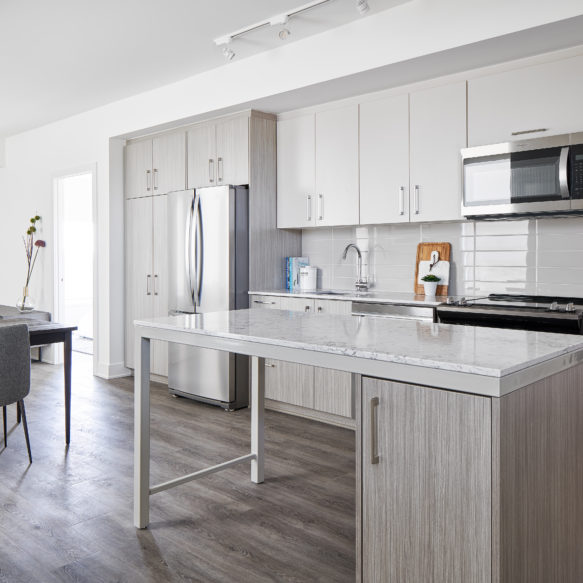 Bright kitchen with grey furniture and grey and white kitchen finishes with large marble island.