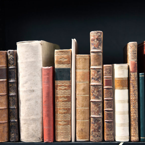 A collection of vintage books are lined up on a shelf.
