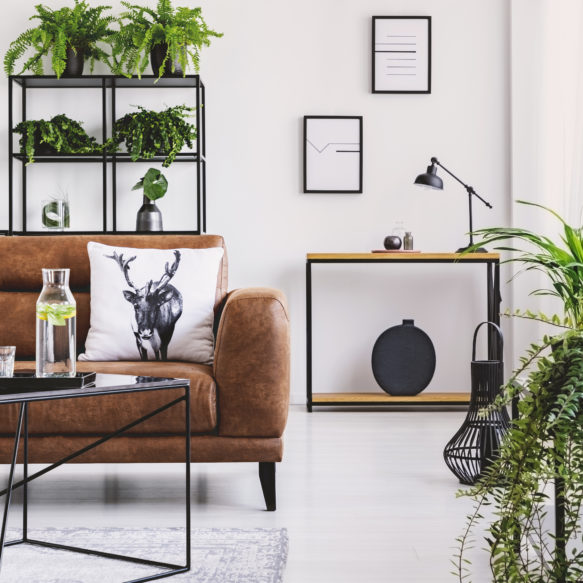 Living room featuring house plants, black shelving and tables and brown leather sofa with decorative pillow.